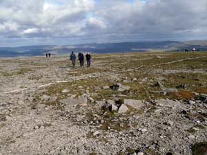Ingleborough summit plateau. Celebrate you've climbed all of the 3 peaks